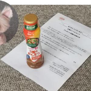 【当選品】 日清ドレッシングダイエット 日清オイリオ