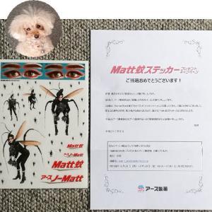 【当選品】 Matt 蚊ステッカー アース製薬