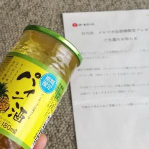 【当選品】 パイン酒 キング醸造