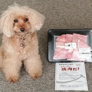 【当選品】 B賞 毎月お届け!12回目「熊本黒毛和牛焼肉用」 エバラ食品工業