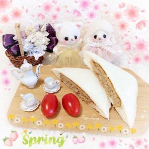 おうちピクニック☆エマとメイ☆ぬい撮り
