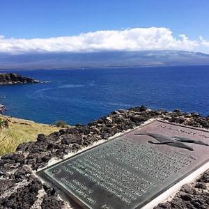 クジラを求めてⅡ 2018年2月ハワイ旅行記6日目その25