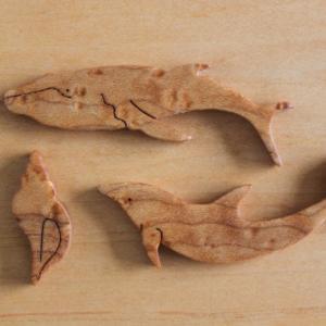 ザトウクジラとイルカと巻貝