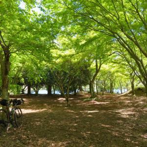 近場の伊豆で瑞々しい新緑を満喫するポタリング