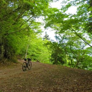 石部の棚田と新緑の大鍋林道