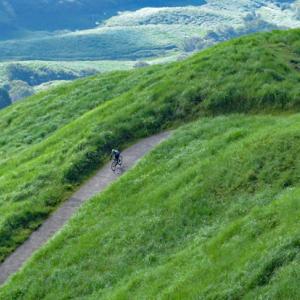 緑が映える夏の細野高原・三筋山