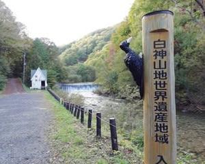 世界遺産の径 ブナ林トレッキング