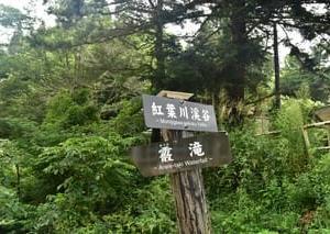 紅葉川渓谷 霰(あられ)滝
