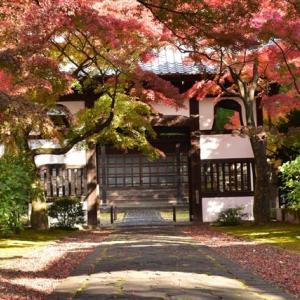 正楽寺の紅葉
