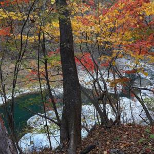 白い岩の間を龍のように流れる鬼怒川と紅葉