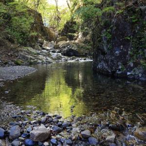 滝の上流、粟野川渓流の風景