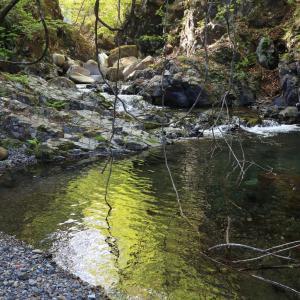 川の溜まり場上流の美しい水面