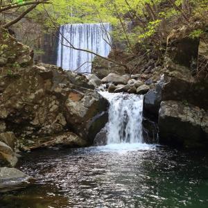 粟野川上流のダム周辺の風景