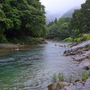 小雨の日の大芦川