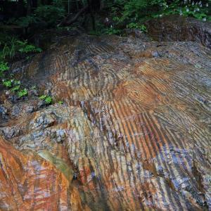 川岸の岩盤の虎岩