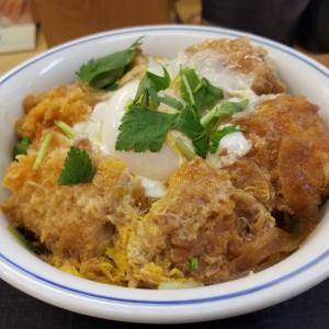 助川式ダイエット119日目