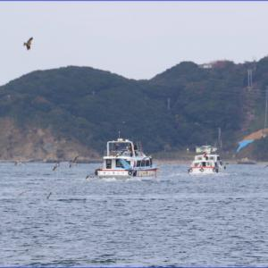 鳥羽湾を行き交う船と大王町波切漁港