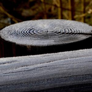 霜が降りた日