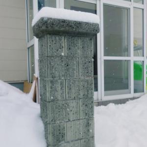 久しぶりに大雪です。