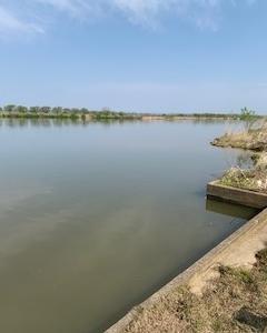 ヘラブナ釣り(石川県 河北潟)仕切り直しです