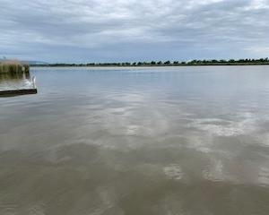 ヘラブナ釣り(石川県 河北潟)修行はこれにて終了