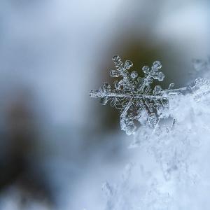 11月22日 きょう一日の氣めぐり 雪が降ったら逢いましょう❤