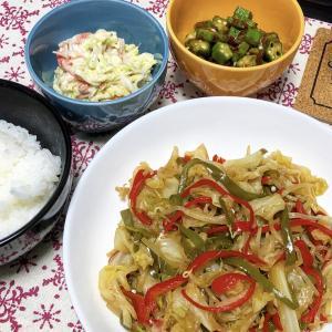 【貧乏飯】肉なし!野菜だけで豪華メニュー!(^^)