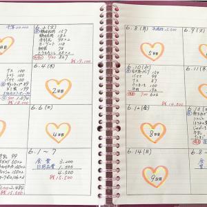 【家計簿】貧乏夫婦、6月分の生活費内容!