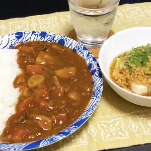 【貧乏飯】冷奴、我が家の新しい食べ方。