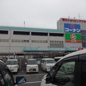 模試の送迎で大阪へ