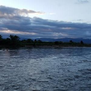 神通川釣行での発見▪️考えたこと❗