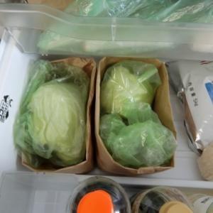 紙袋!わが家の冷蔵庫