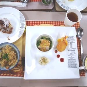 武蔵野調理師専門学校の食育教室