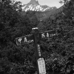 記憶の欠片 登山道
