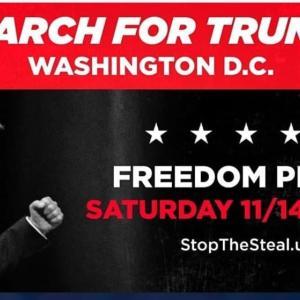 #STOP THE STEAL トランプのための行進