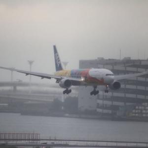 ANA&JAL/TOKYO 2020特別塗装機