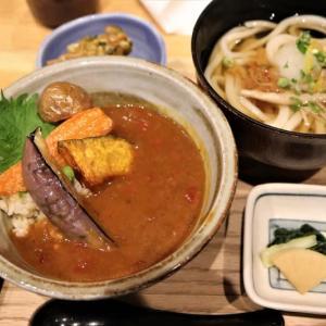 玄米野菜カレー丼&うどん