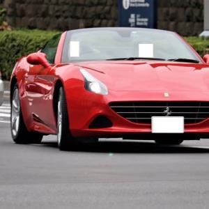 フェラーリのT