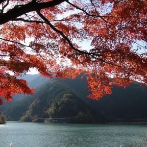 名栗湖の紅葉