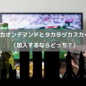 タカラヅカ・オン・デマンドとタカラヅカ・スカイステージ(加入するならどっち?)