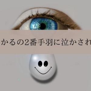愛月ひかるの2番手羽に泣かされた女A〜「眩耀の谷/Ray」感想〜