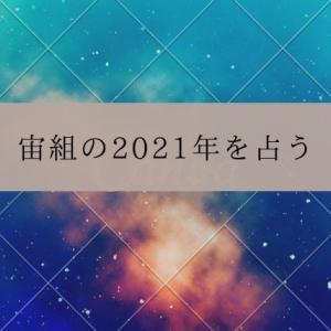 宙組の2021年を占う