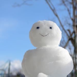雪だるま(全世界株式)に毎日積立するメリット