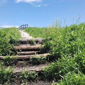 阿蘇のミルクロードに存在した「天国への階段」