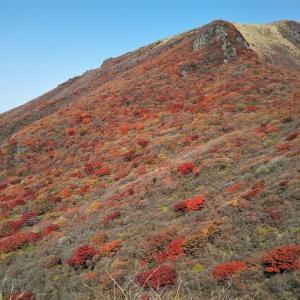 紅葉のくじゅう登山「扇ヶ鼻&星生山」