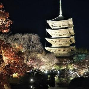 秋の東寺ライトアップ