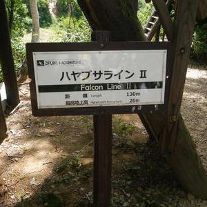 夏のキャラバン、今年妙高笹ヶ峰高原に長期ステイ、day6 ZIPラインでムササビ気分