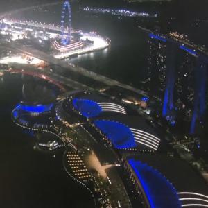 F1第15戦 シンガポールGP決勝
