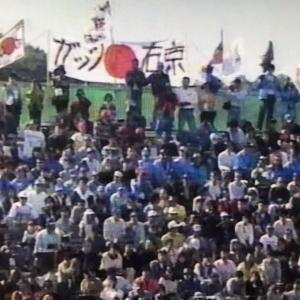 過去のレースを振り返る 1995年パシフィックGP