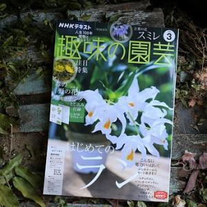 『趣味の園芸3月号』にお店を掲載していただきました!